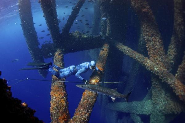 Нефтяные вышки в Мексиканском заливе