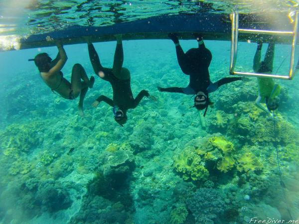 Балийское путешествие. Ныряние с мантами