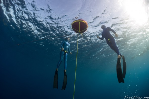 Курс SSI Freediving Level I