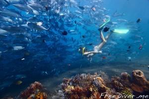 Фридайвинг на Бали