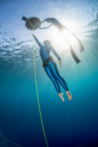 Курс SSI Freediving Level II